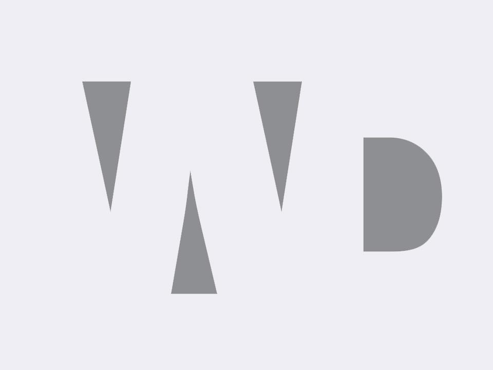 Wright Davies logotype design